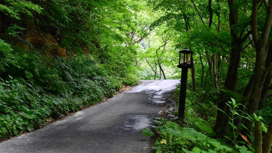 *駐車場から施設までの坂道。あと少しで到着。