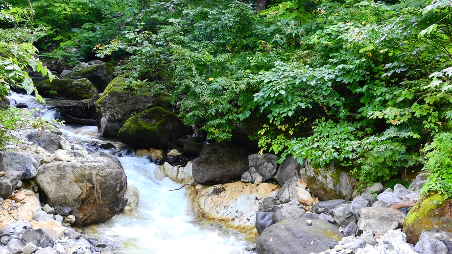 *【青荷川】施設内を流れる渓流