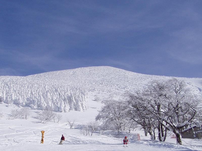 樹氷プルミエール箕輪