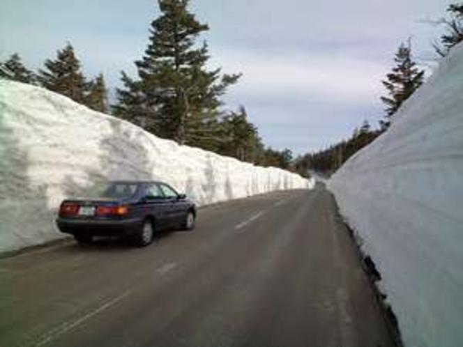 スカイライン名物「雪の回廊」