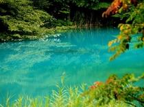 磐梯山の噴火によってつくられた湖沼「五色沼」