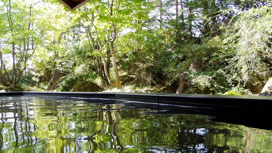 大浴場 箕輪軟水の湯