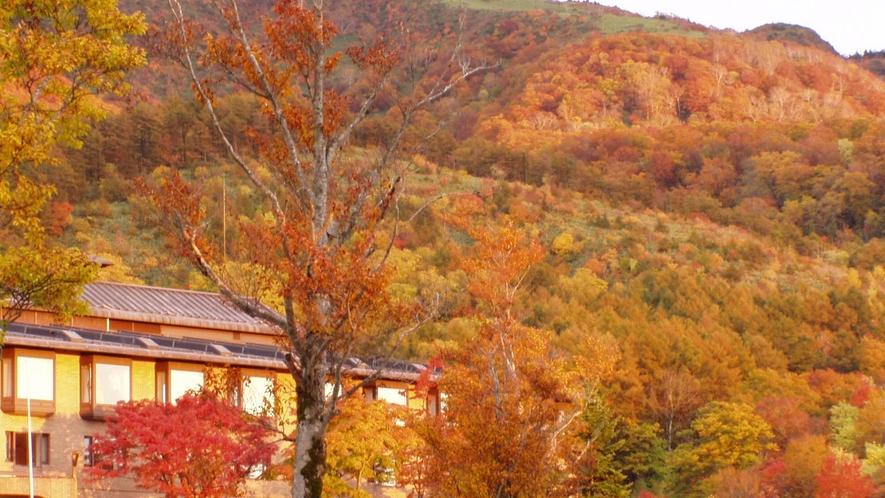 紅葉シーズンも、360度 山々が色づき幻想的な雰囲気を味わえます
