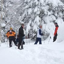 *冬のアクティビティ/雪に覆われた十勝・大雪山連峰の大地と森を歩く「スノーシュー」体験。