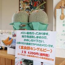 *富良野メロン/「キングルビー」は富良野メロンの最高級品!地方発送も承りますのでお土産にお勧め。