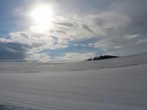 目の前の丘