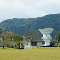 ◆錦江湾公園◆ ホテルより車で15分!