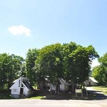 *【コテージ村】ピクニックにも最適なロケーション。青い空と木々の緑に癒されます。