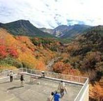 秋の紅葉シーズン