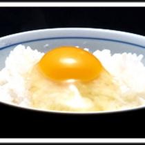 朝食につく新鮮なわんぱく卵。