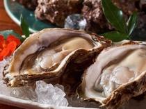 岩牡蠣(6月中旬から8月初めまで)