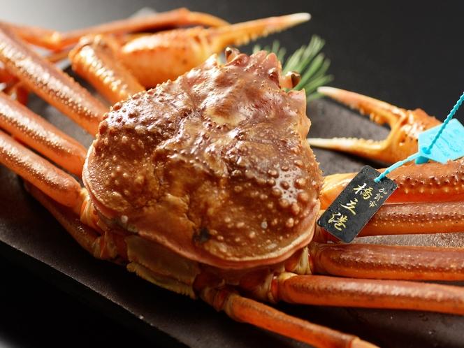 冬の王様!極上タグ付きずわい蟹