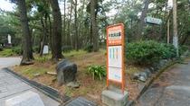 *【施設周辺】当館より徒歩2分で行ける千本浜公園。朝の散歩にも気持ちが良いです♪