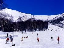 栂池高原スキー場「はんの木ゲレンデ」