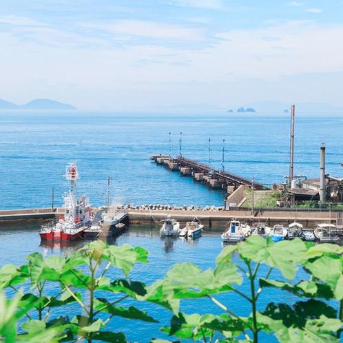 ホテルからの高島漁港