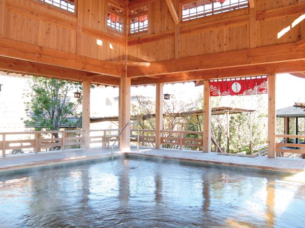 源泉館(天然温泉):水着露天風呂の最奥!茶褐色の天然温泉です