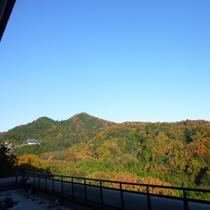 テラスからの眺め 紅葉