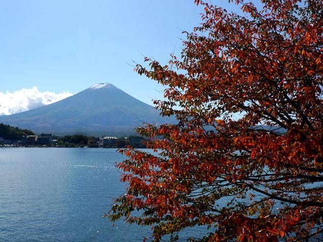 紅葉に染まる11月の河口湖。