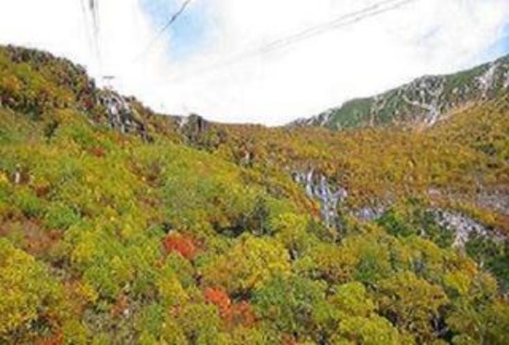 駒ヶ岳紅葉