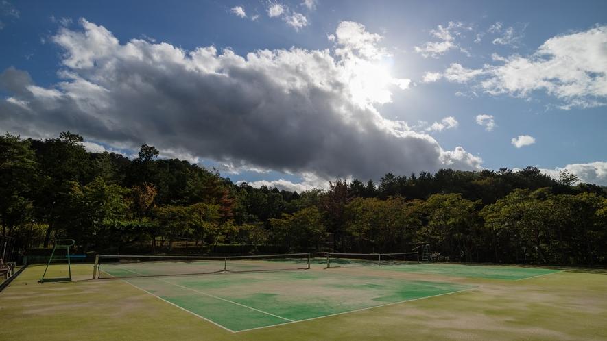 大自然の中にあるオムニバステニスコート(2面)