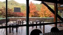 ビラブリガーデンカフェからの紅葉景色