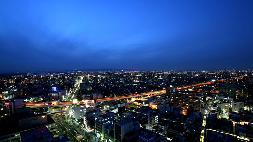 堺市役所21階展望ロビーからの眺め
