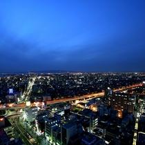 【堺市役所21階展望ロビーからの眺め】