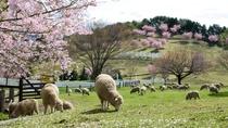 伊香保グリーン牧場~春~
