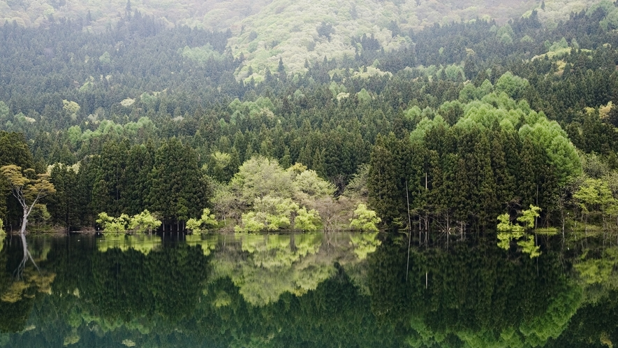 *緑美しい北竜湖