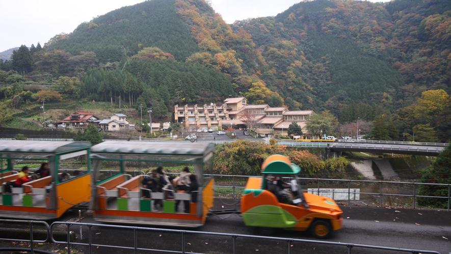 「とことこトレイン」錦川清流線錦町駅から雙津峡温泉までの約6キロ間トロッコ遊覧車