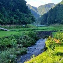 近くの折戸渓谷。川のせせらぎが心地よいです。