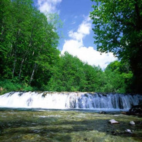 ハーモニカの滝