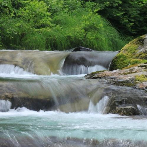 五感すべてを魅了する奥志賀の大自然
