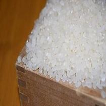 地元「伊王野産のお米」