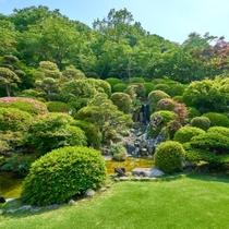 初夏の光を浴びて、緑に輝く日本庭園。