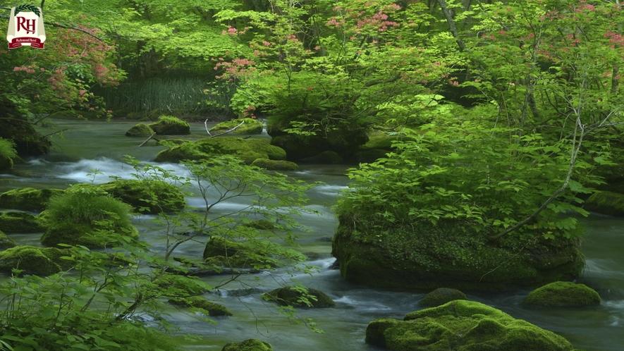 奥入瀬渓流 十和田