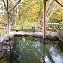 山沿いの露天風呂「水芭蕉の湯」