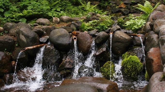<いわて旅応援・岩手県民限定>素泊まりで気ままにくつろぐ♪高原に佇む宿。