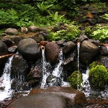 *岩誦坊(がんしょうぼう)/天台の湯は、その中腹から湧き出る水「岩誦坊」を使用しております。