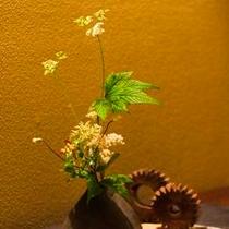 季節のお花がお出迎え