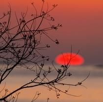 宿毛湾に落ちる夕日