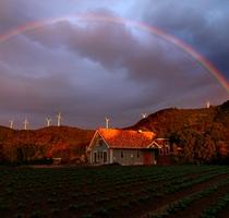 冬のあさの虹