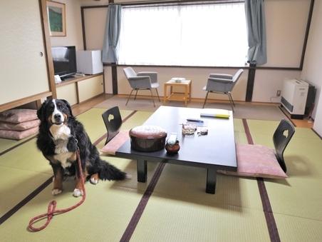 ペットと一緒に『畳』のお部屋2階 《ペット館和室》