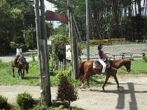 乗馬風景1
