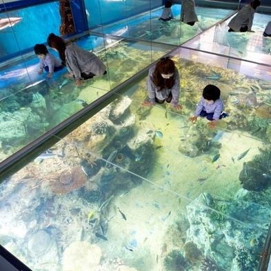 【松島水族館チケット付】みんな楽しい!温泉で癒された後は<越前松島水族館>へGO!入館券付きでお得♪