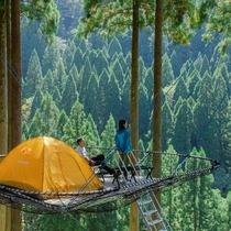 Tree Picnic Adventure IKEDA(ツリーピクニックアドベンチャーいけだ)