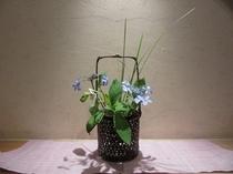 フロントの飾り窓のお花