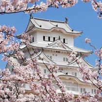 ◆姫路城◆当館から徒歩10分