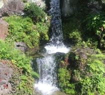 庭園 滝スペース