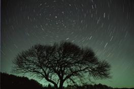 ハロウィンのテラスから星空を見上げよう!